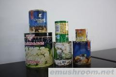 供应出口蘑菇罐头