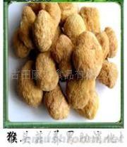 供应猴头菇,香菇,银耳茶树菇,食用菌,竹荪,黑木耳
