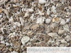 批发;野生产品 食用菌  白参 木耳 灵芝 等