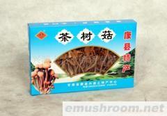供应 茶树菇 土特产等