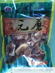 供应元蘑 (250克)20元