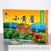 批发供应内蒙古特产阿尔山山珍小黄蘑250g(诚招)