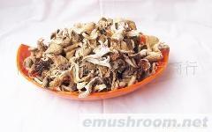 供應黃金菇   1公斤自封袋裝黃金菇