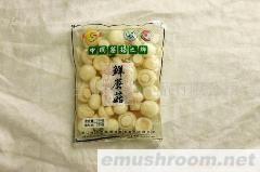 供应软包装双孢蘑菇