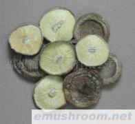 供应菌床足切薄菇